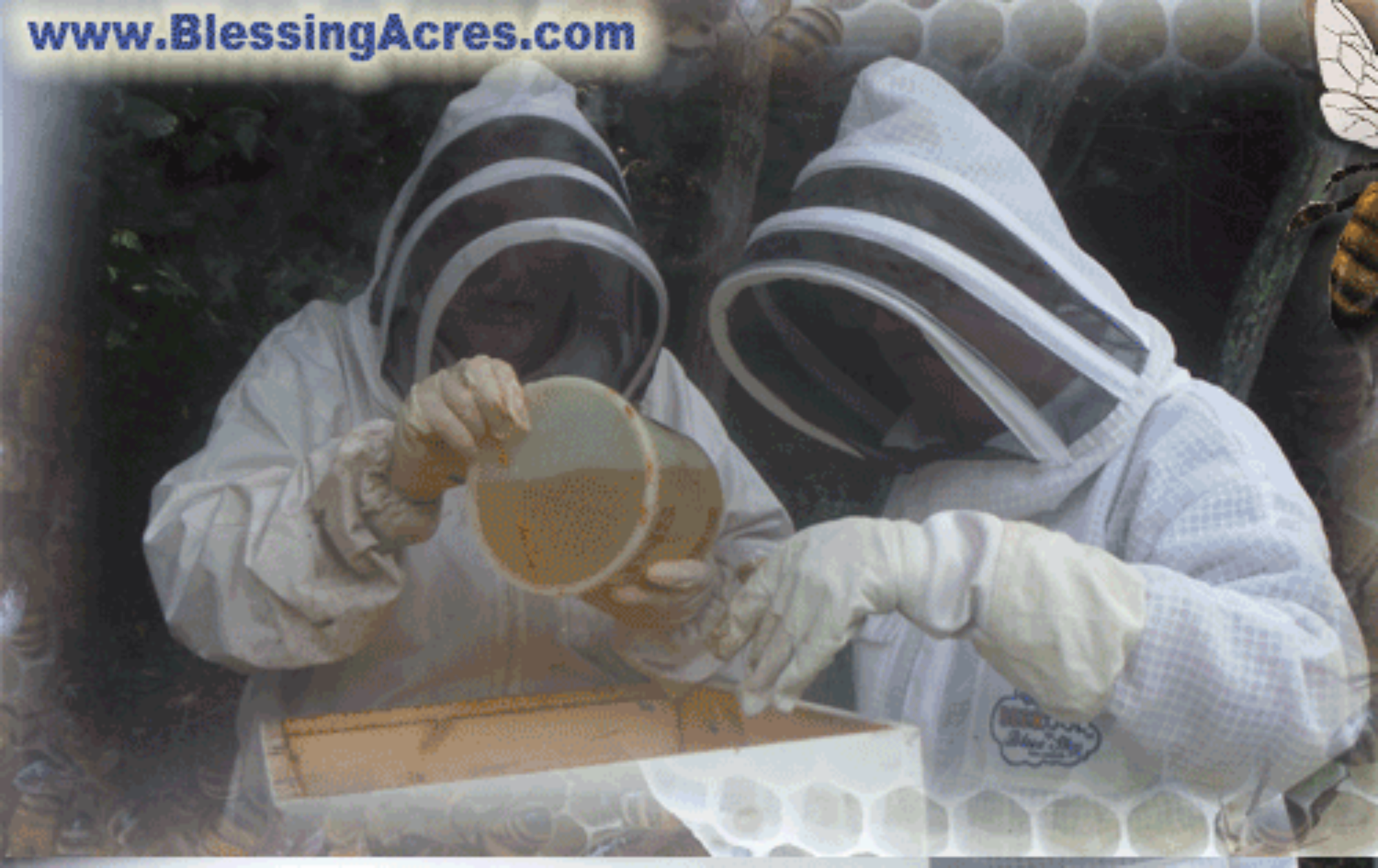 Blessing Acres Apiaries